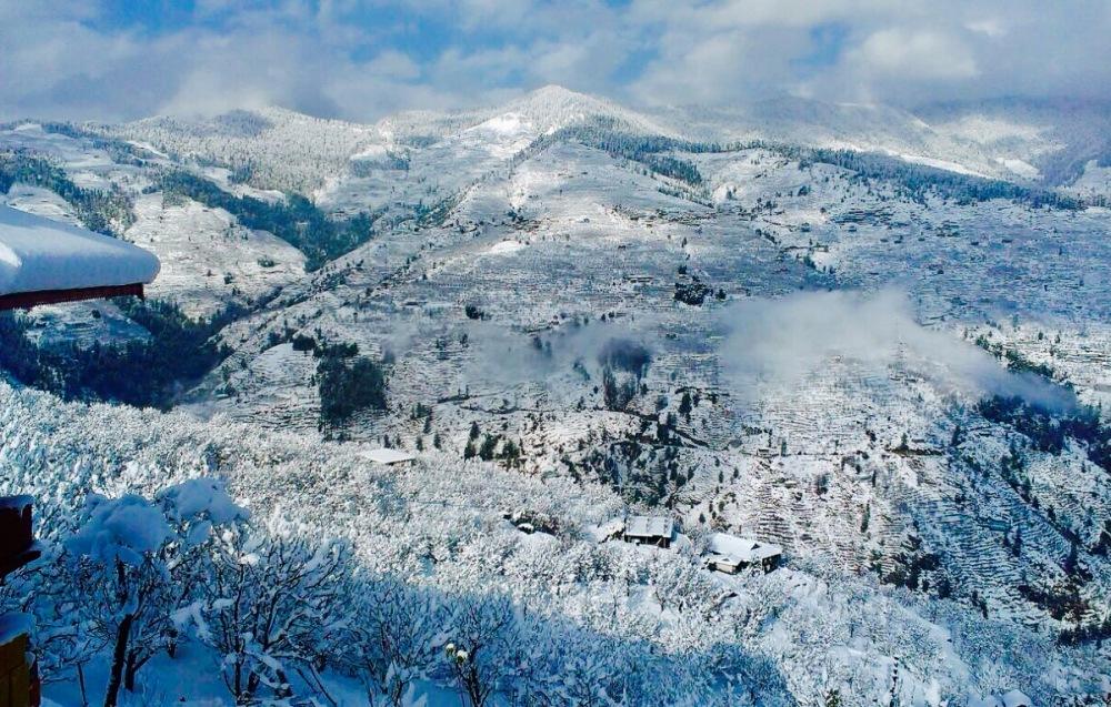 Shimla Yatripandit