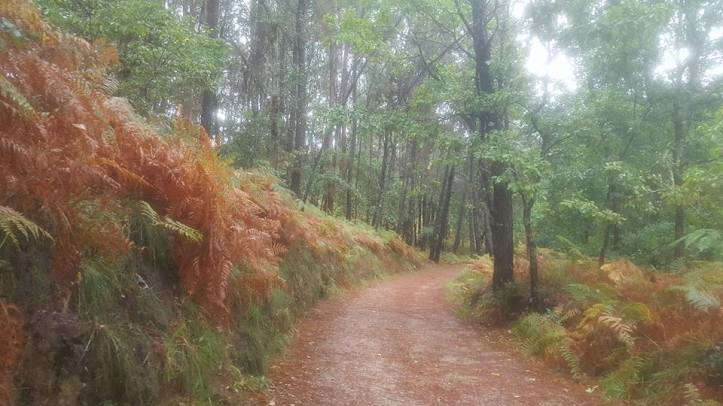 On the Camino de Santiago