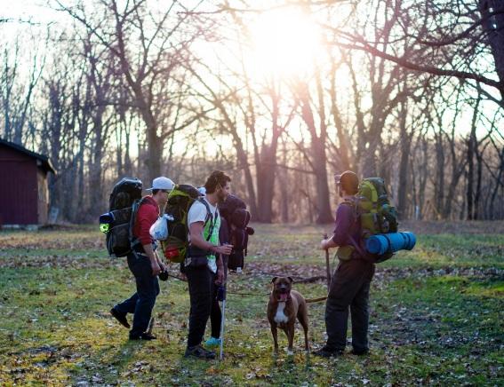 social camping